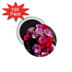 Wonderful Pink Flower Mix 1 75  Magnets (100 Pack)