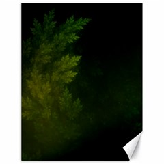 Beautiful Fractal Pines In The Misty Spring Night Canvas 18  X 24   by jayaprime