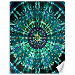 Peacock Throne Flower Green Tie Dye Kaleidoscope Opaque Color Canvas 18  X 24   by Mariart