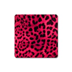 Leopard Skin Square Magnet by BangZart