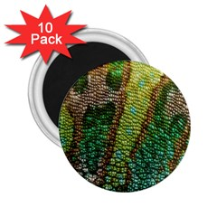 Chameleon Skin Texture 2 25  Magnets (10 Pack)  by BangZart