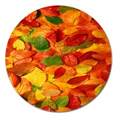 Leaves Texture Magnet 5  (round) by BangZart