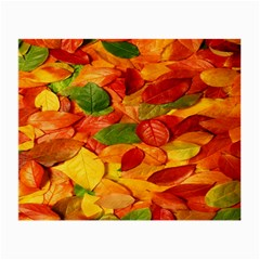 Leaves Texture Small Glasses Cloth