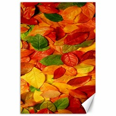 Leaves Texture Canvas 24  X 36  by BangZart