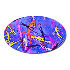 Paint Splashes                       Magnet (oval)