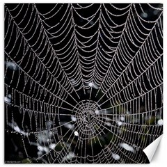 Spider Web Wallpaper 14 Canvas 12  X 12   by BangZart