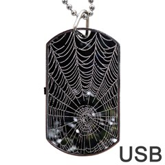 Spider Web Wallpaper 14 Dog Tag Usb Flash (two Sides) by BangZart
