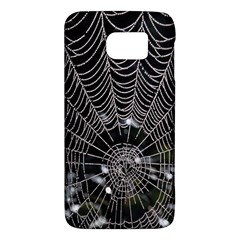 Spider Web Wallpaper 14 Galaxy S6 by BangZart
