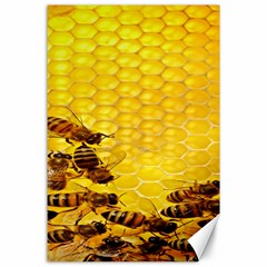 Sweden Honey Canvas 24  X 36  by BangZart