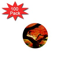 Maple Tree Nice 1  Mini Magnets (100 Pack)  by BangZart