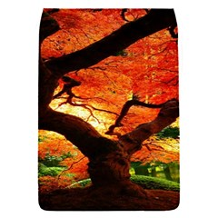 Maple Tree Nice Flap Covers (s)  by BangZart