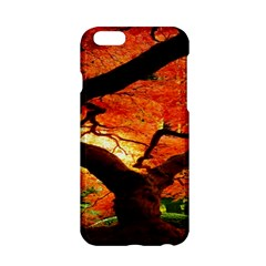 Maple Tree Nice Apple Iphone 6/6s Hardshell Case by BangZart