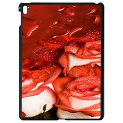 Nice Rose With Water Apple Ipad Pro 9 7   Black Seamless Case by BangZart