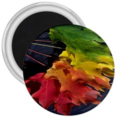 Green Yellow Red Maple Leaf 3  Magnets by BangZart