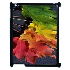 Green Yellow Red Maple Leaf Apple Ipad 2 Case (black)