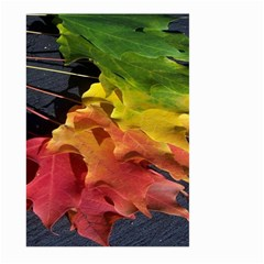 Green Yellow Red Maple Leaf Large Garden Flag (two Sides) by BangZart