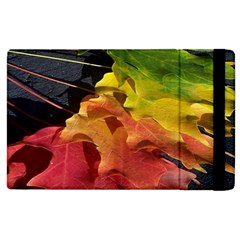 Green Yellow Red Maple Leaf Apple Ipad 2 Flip Case by BangZart
