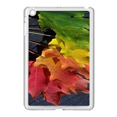 Green Yellow Red Maple Leaf Apple Ipad Mini Case (white) by BangZart