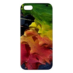 Green Yellow Red Maple Leaf Apple Iphone 5 Premium Hardshell Case by BangZart
