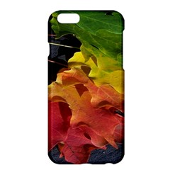 Green Yellow Red Maple Leaf Apple Iphone 6 Plus/6s Plus Hardshell Case by BangZart