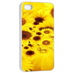 Beautiful Sunflowers Apple Iphone 4/4s Seamless Case (white) by BangZart
