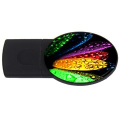 Abstract Flower Usb Flash Drive Oval (4 Gb) by BangZart