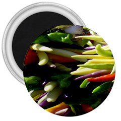 Bright Peppers 3  Magnets by BangZart