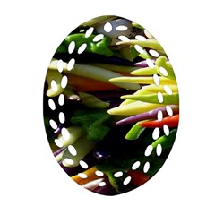 Bright Peppers Ornament (oval Filigree) by BangZart
