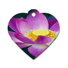 Pink Lotus Flower Dog Tag Heart (two Sides) by BangZart