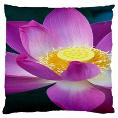 Pink Lotus Flower Large Cushion Case (two Sides) by BangZart