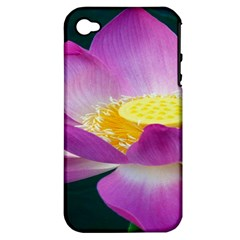 Pink Lotus Flower Apple Iphone 4/4s Hardshell Case (pc+silicone) by BangZart