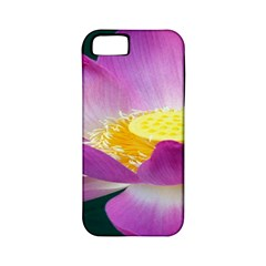 Pink Lotus Flower Apple Iphone 5 Classic Hardshell Case (pc+silicone) by BangZart