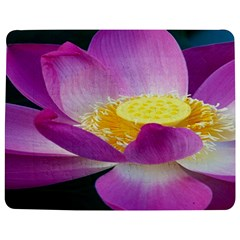 Pink Lotus Flower Jigsaw Puzzle Photo Stand (rectangular) by BangZart