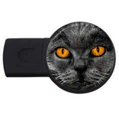 Cat Eyes Background Image Hypnosis Usb Flash Drive Round (2 Gb) by BangZart