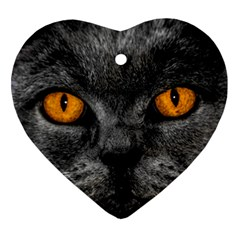 Cat Eyes Background Image Hypnosis Heart Ornament (two Sides) by BangZart