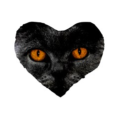 Cat Eyes Background Image Hypnosis Standard 16  Premium Heart Shape Cushions by BangZart
