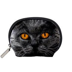 Cat Eyes Background Image Hypnosis Accessory Pouches (small)  by BangZart