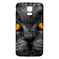 Cat Eyes Background Image Hypnosis Samsung Galaxy S5 Back Case (white)