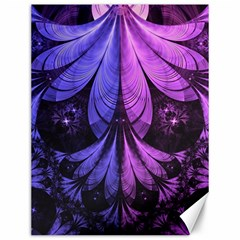 Beautiful Lilac Fractal Feathers Of The Starling Canvas 12  X 16   by jayaprime
