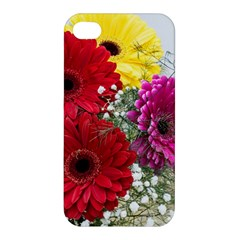 Flowers Gerbera Floral Spring Apple Iphone 4/4s Premium Hardshell Case by BangZart
