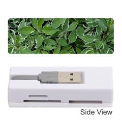 Texture Leaves Light Sun Green Memory Card Reader (stick)  by BangZart