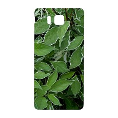 Texture Leaves Light Sun Green Samsung Galaxy Alpha Hardshell Back Case by BangZart
