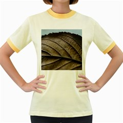 Leaf Veins Nerves Macro Closeup Women s Fitted Ringer T Shirts by BangZart