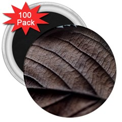 Leaf Veins Nerves Macro Closeup 3  Magnets (100 Pack) by BangZart