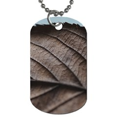 Leaf Veins Nerves Macro Closeup Dog Tag (one Side) by BangZart