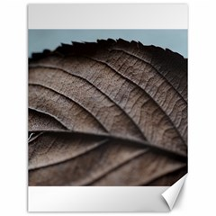 Leaf Veins Nerves Macro Closeup Canvas 12  X 16   by BangZart