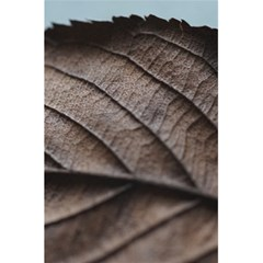 Leaf Veins Nerves Macro Closeup 5 5  X 8 5  Notebooks by BangZart
