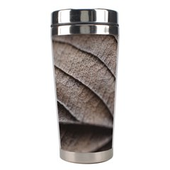 Leaf Veins Nerves Macro Closeup Stainless Steel Travel Tumblers by BangZart