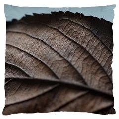 Leaf Veins Nerves Macro Closeup Large Flano Cushion Case (one Side) by BangZart