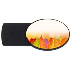 Autumn Leaves Colorful Fall Foliage Usb Flash Drive Oval (2 Gb) by BangZart